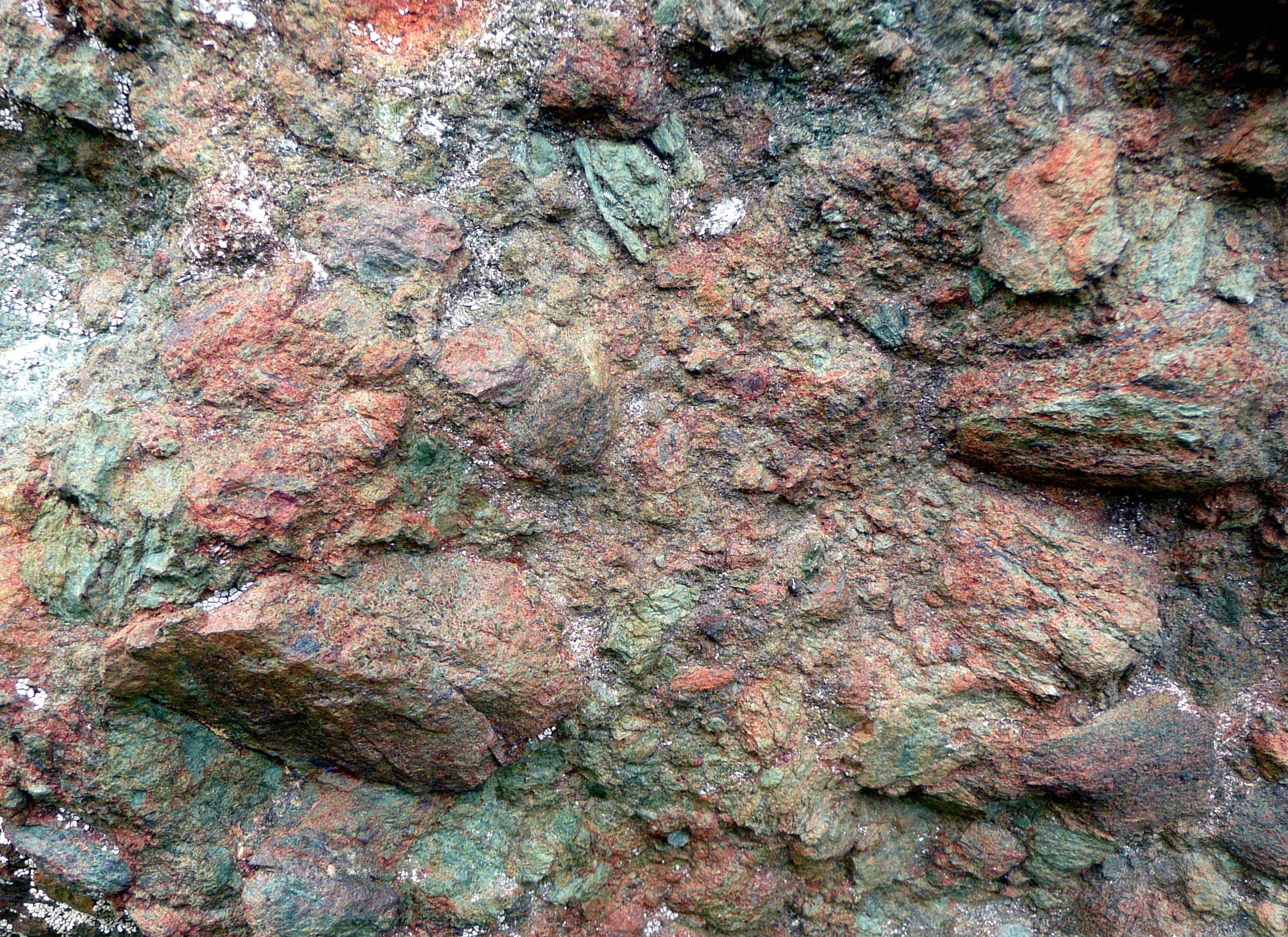 Eclogite breccias seen during the Alpine field trip