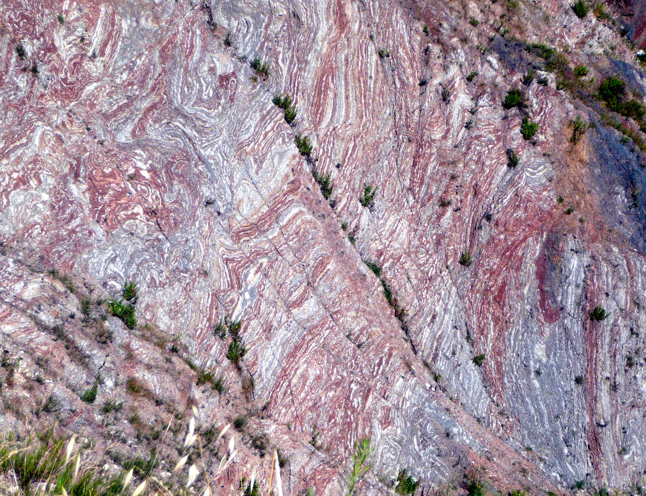 Colourful scaly clays in the Northern Apennines