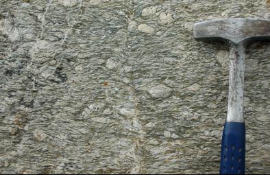 Augen gneiss, showing eyes of feldspar wrapped by the alpine foliation. Depth of deformation ~ 25 km
