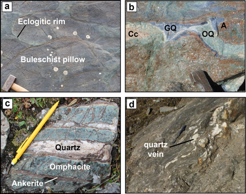 Field images from the studied part of the Chinese Tianshan metamorphoc belt a) Blueschist-facies pillow basalt with eclogite-facies rims along the pillow margins. b) Blueschist- to eclogite-facies veins of omphacite-quartz (OQ), glaucophane-quartz (GQ), ankerite (A) and calcite (Cc). c) Thick veins of quartz and ankerite in an eclogite. d) Decimetric veins of quartz in a high-pressure metapelite indicating Si-rich fluid circulation. Note that the veins show deformation structures similar to the metapelites, implying their formation before or during deformation.