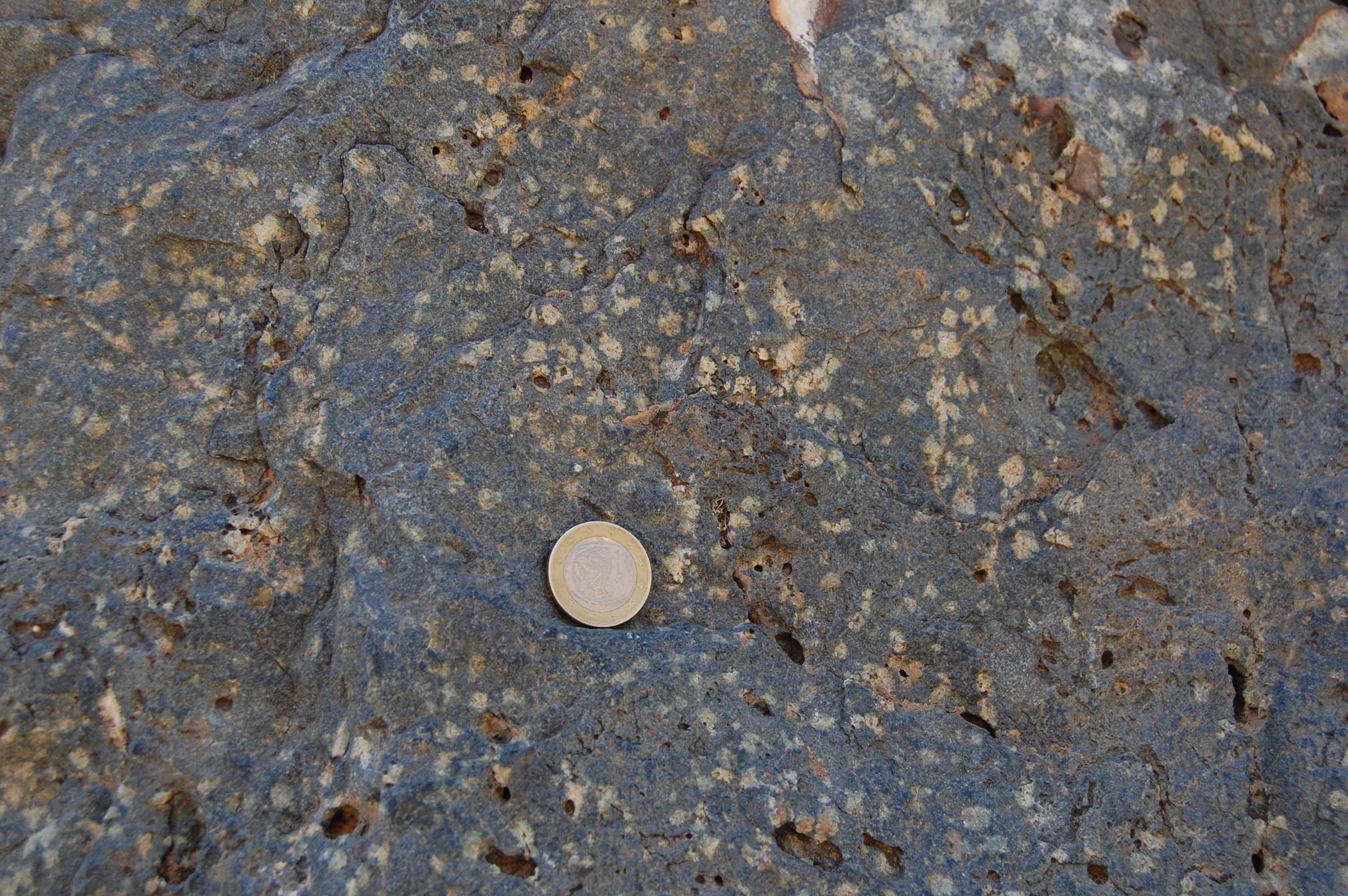 Lawsonite pseudomorphs in blueschist