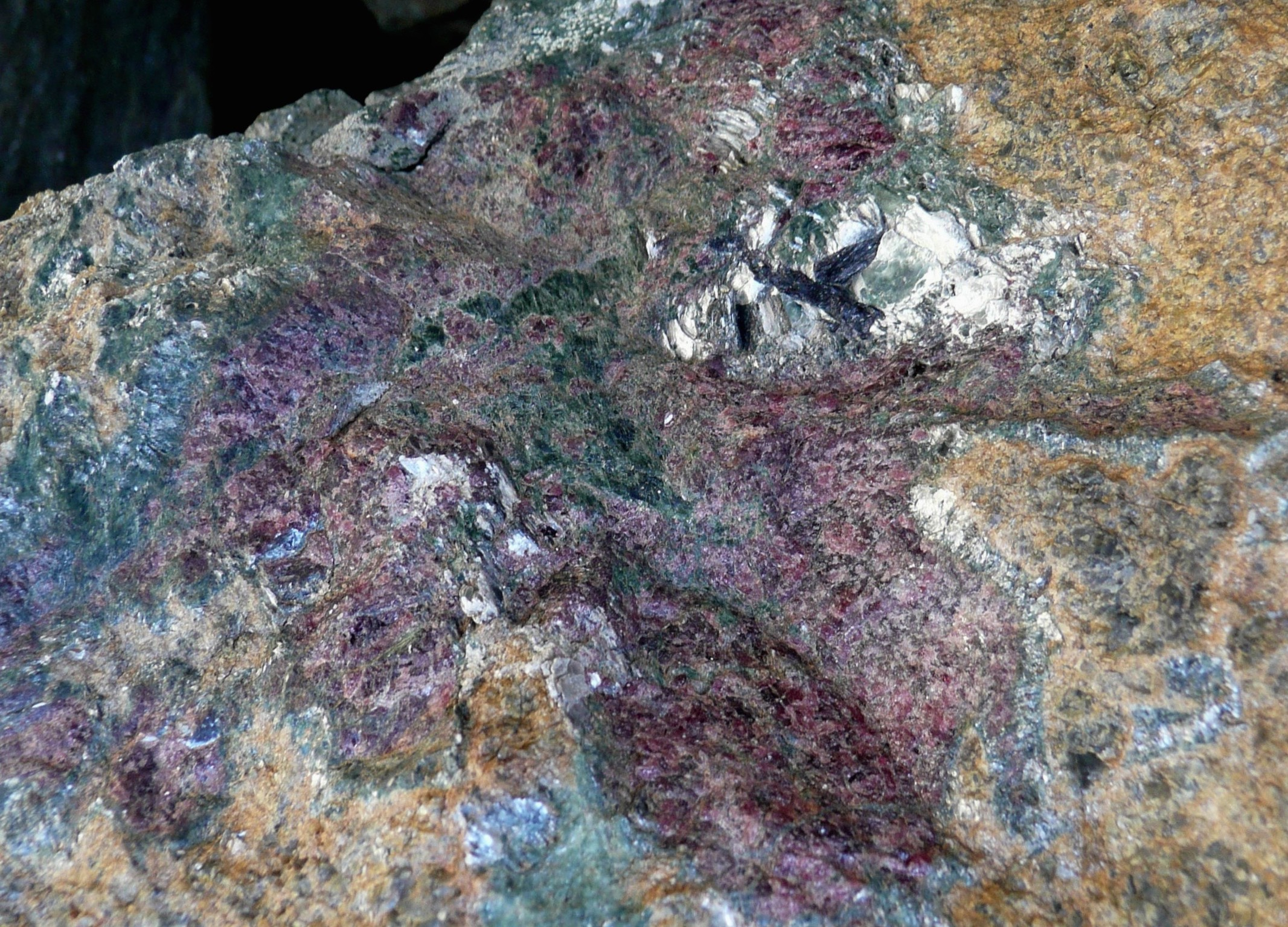Garnet megablast (from circulating fluids) in de-serpentinzed garnet peridotite.